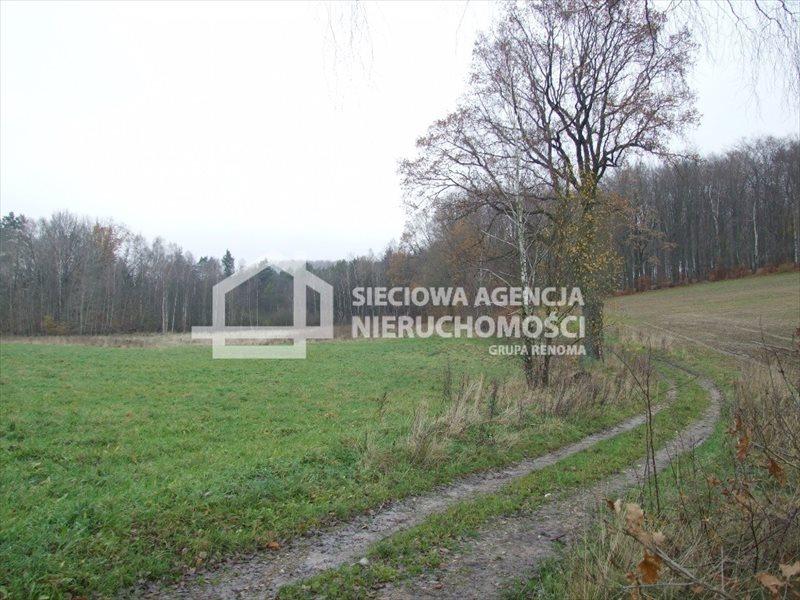 Działka rolna na sprzedaż Trzepowo  40200m2 Foto 1