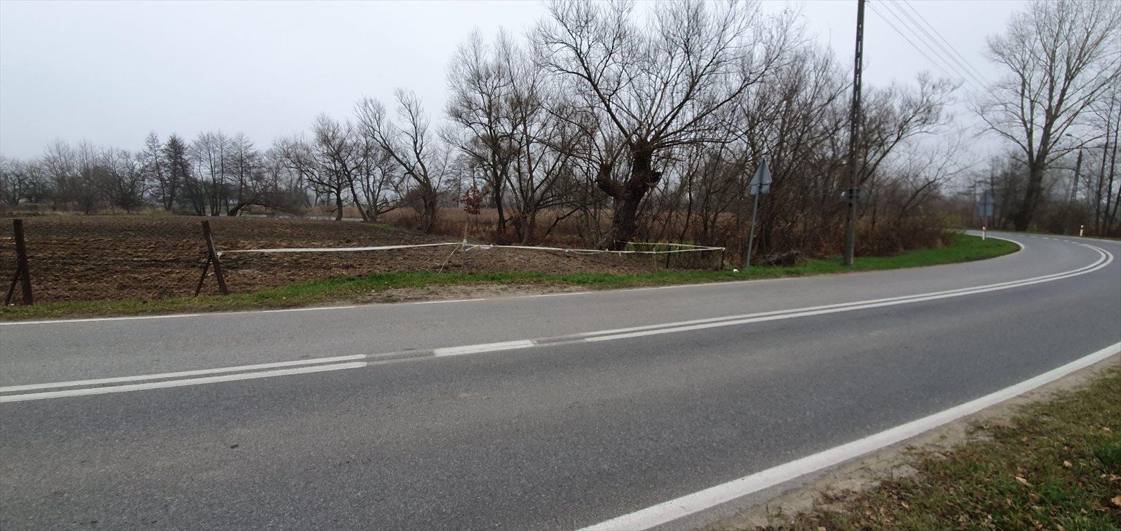 Działka budowlana na sprzedaż Konstacin-Jeziorna, Cieciszew  2900m2 Foto 7