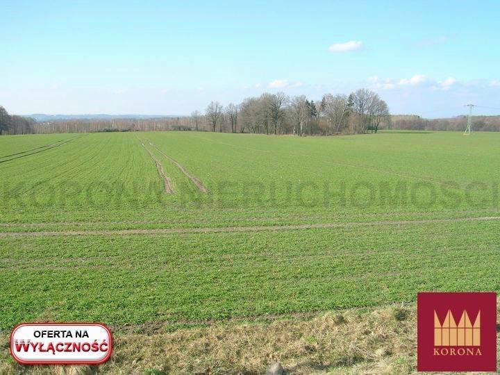 Działka rolna na sprzedaż Adamowice  51000m2 Foto 2
