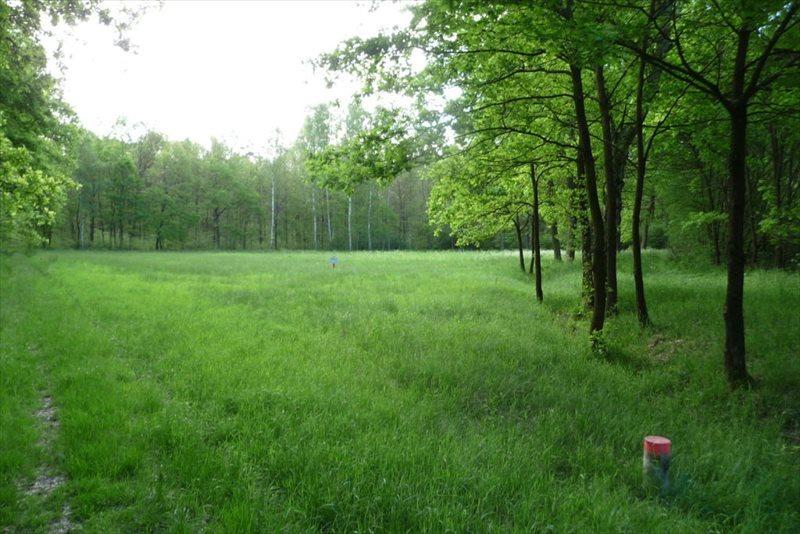 Działka rolna na sprzedaż Świdnica  4900m2 Foto 1