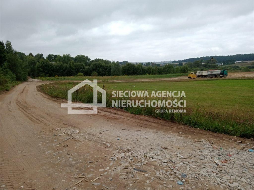 Działka rolna na sprzedaż Przyjaźń  4900m2 Foto 2