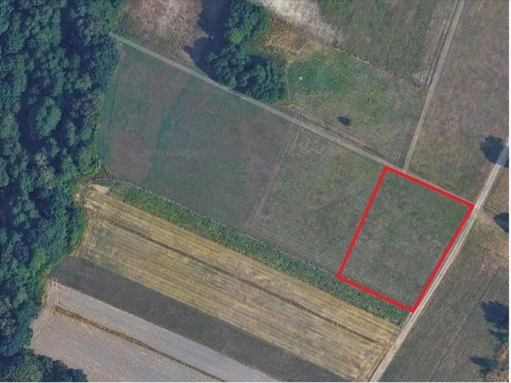 Działka rolna na sprzedaż Mikołów, Mikołów  3260m2 Foto 2