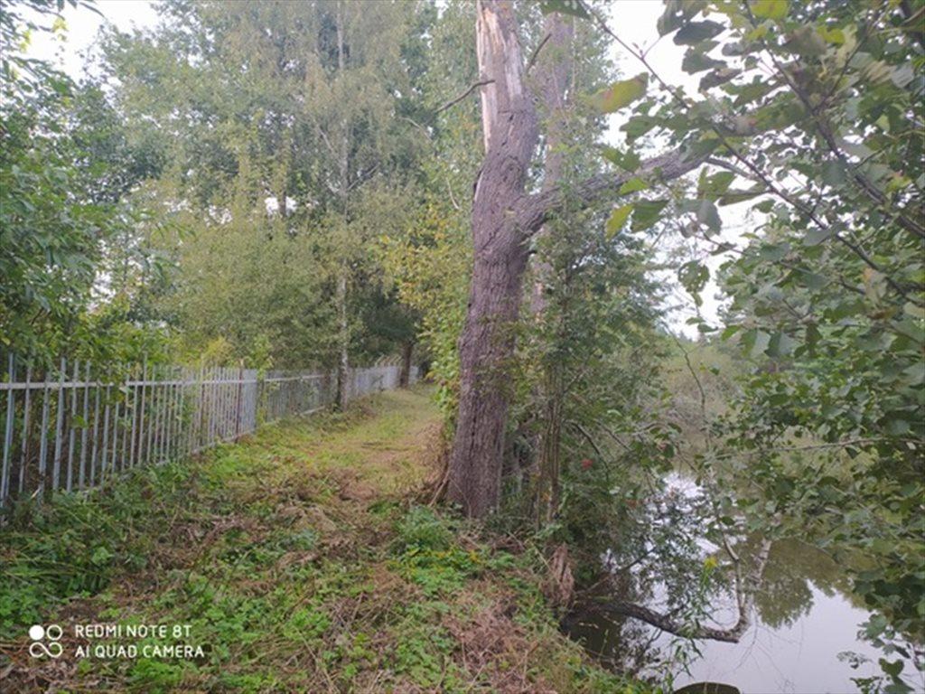 Działka budowlana na sprzedaż Łódź, Bałuty  3100m2 Foto 7