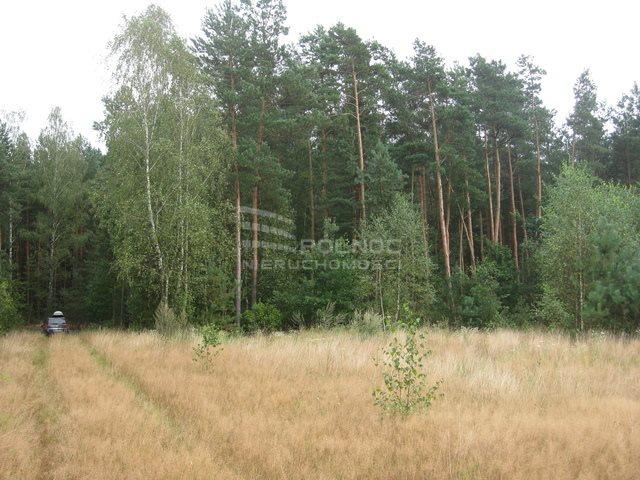 Działka rolna na sprzedaż Kudrycze  3151m2 Foto 3