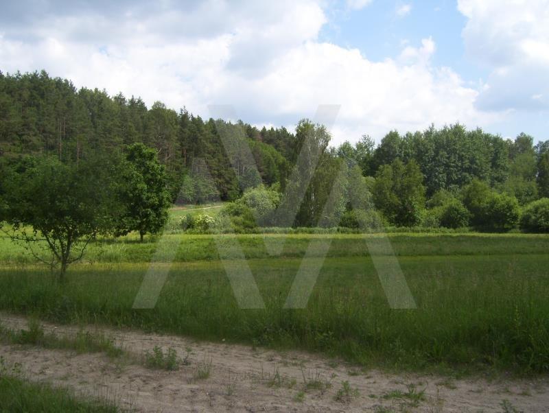 Działka siedliskowa na sprzedaż Mierzeszyn, Jezioro, Kościół, Las, Plac zabaw, Przedszkole, Pr, ŁAKOWA  14370m2 Foto 11
