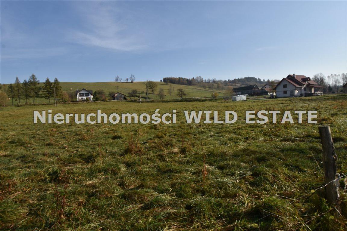Działka rolna na sprzedaż Olszanica, Paszowa  3287m2 Foto 5