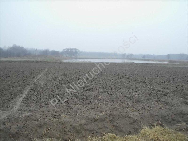 Działka rolna na sprzedaż Ciemno-Gnojna  20700m2 Foto 2