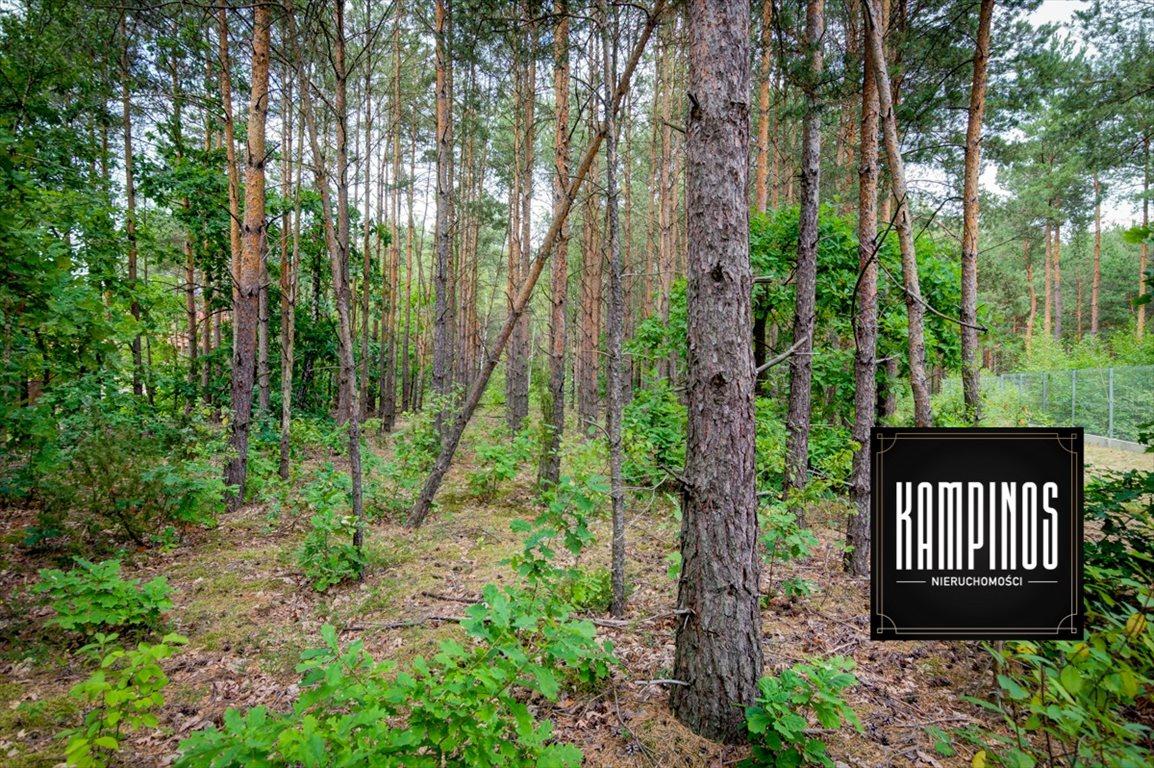 Działka budowlana na sprzedaż Truskaw, Izabelin, oferta 2793  2000m2 Foto 5
