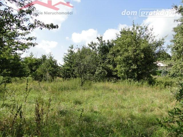 Działka rolna na sprzedaż Korczyna  1300m2 Foto 3