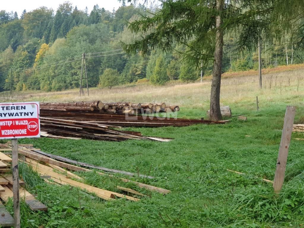 Działka rekreacyjna na sprzedaż Wisła, Jawornik  19000m2 Foto 10