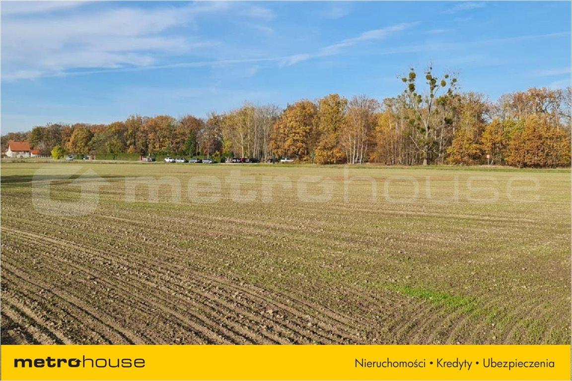 Działka rolna na sprzedaż Karwiany, Żórawina  34568m2 Foto 2