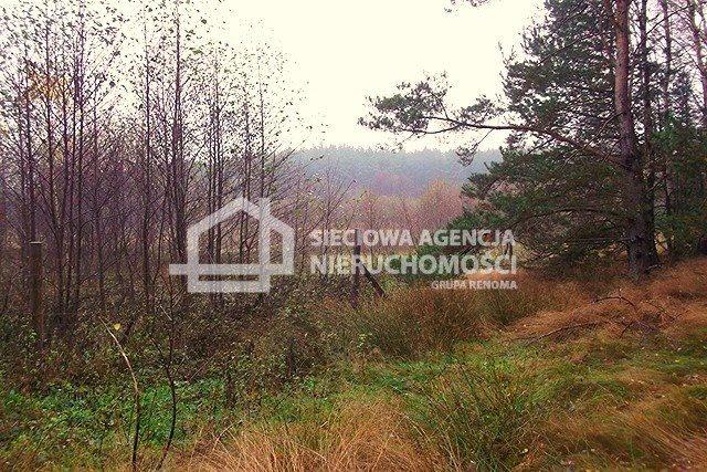 Działka leśna na sprzedaż Skwierawy  64900m2 Foto 11