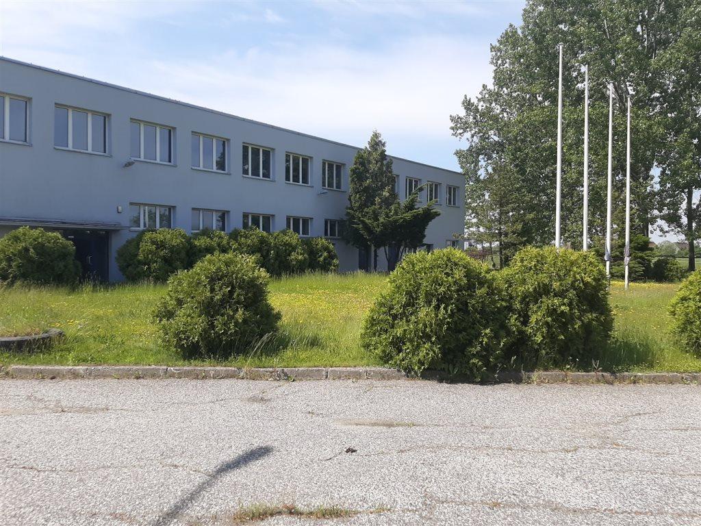 Lokal użytkowy na sprzedaż Gliwice  5000m2 Foto 3