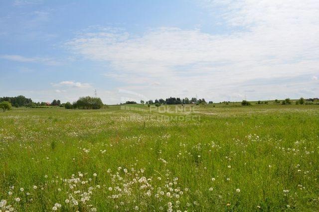 Działka rolna na sprzedaż Dobrzyniewo Kościelne  3196m2 Foto 8