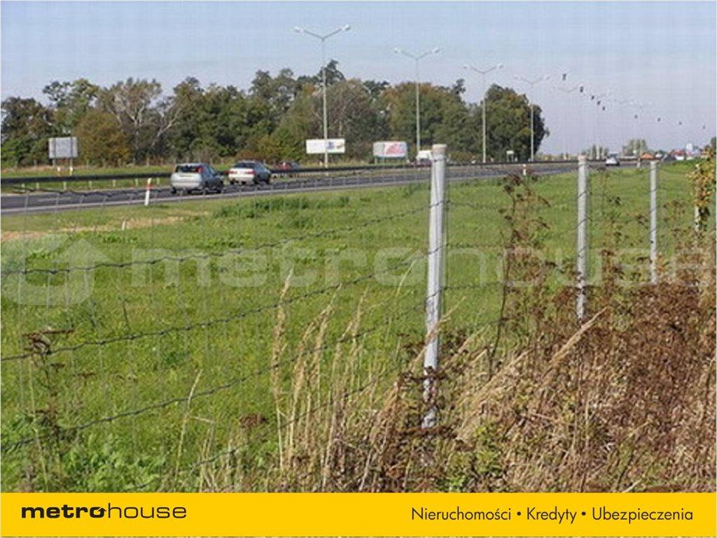Działka rolna na sprzedaż Karwiany, Żórawina  34568m2 Foto 4