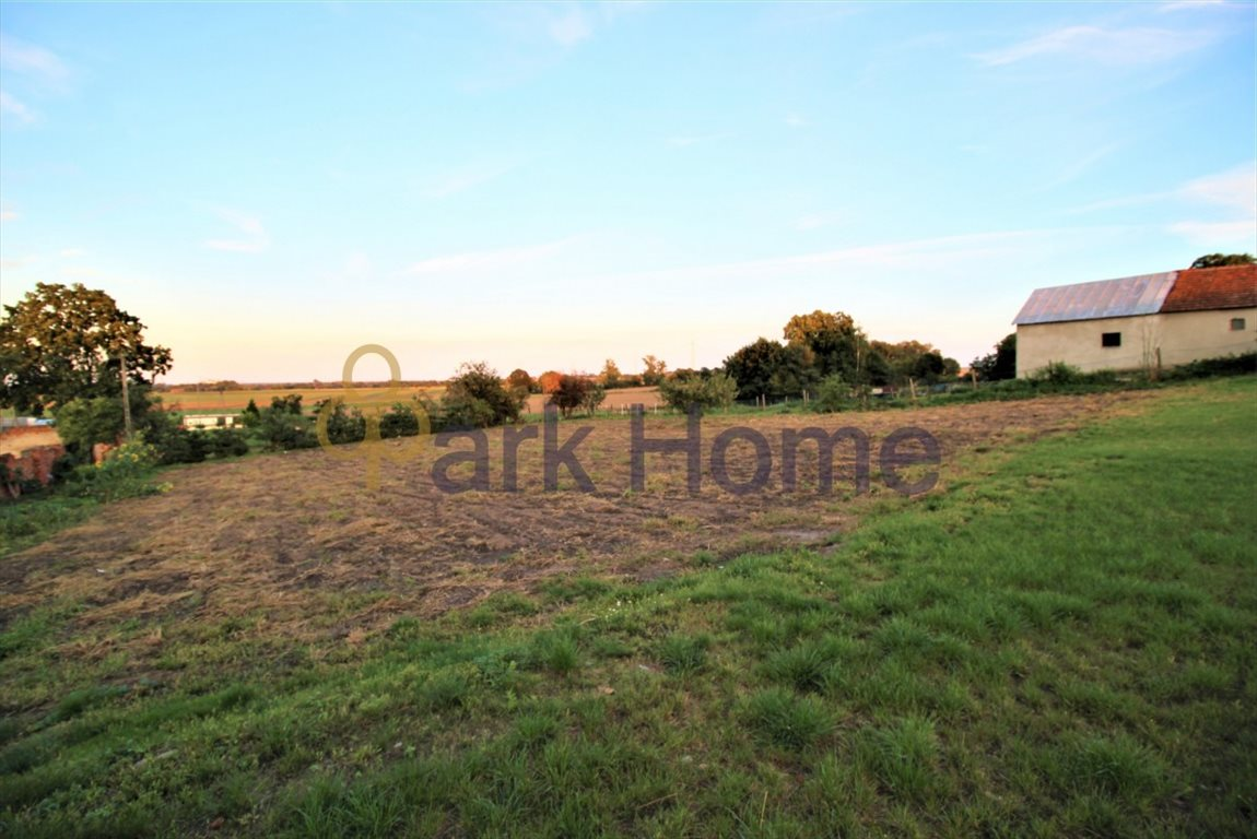 Działka rolna na sprzedaż Kurów Wielki  3356m2 Foto 2
