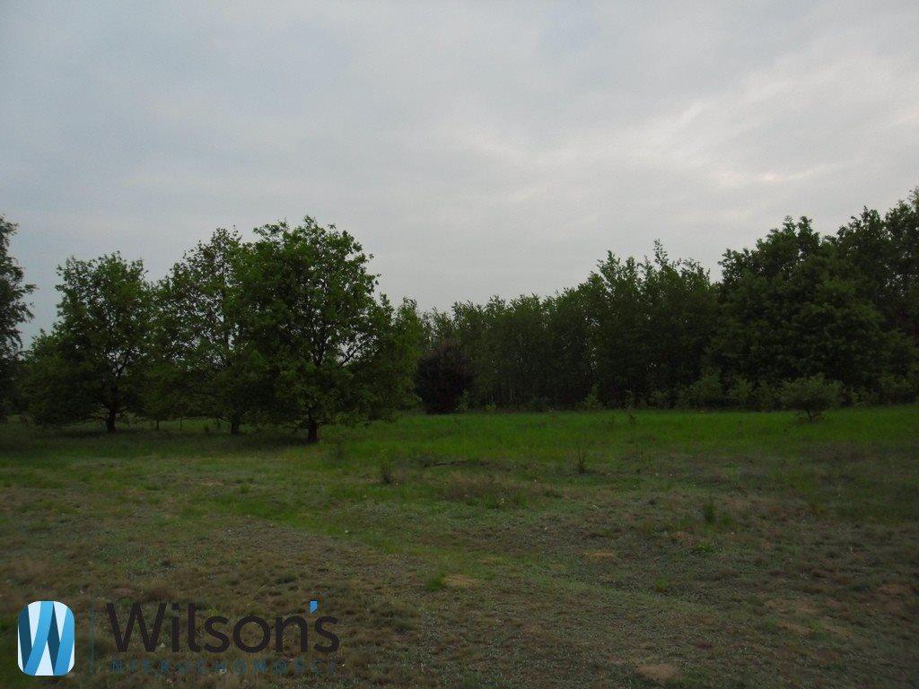 Działka rolna na sprzedaż Radom, Formierska  6000m2 Foto 4