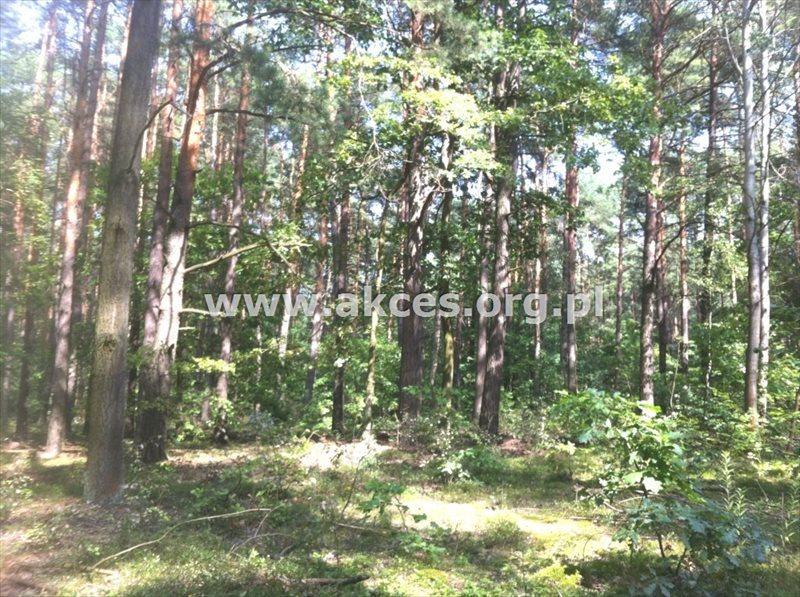 Działka inna na sprzedaż Sękocin Stary, Sękocin-Las  2100m2 Foto 1