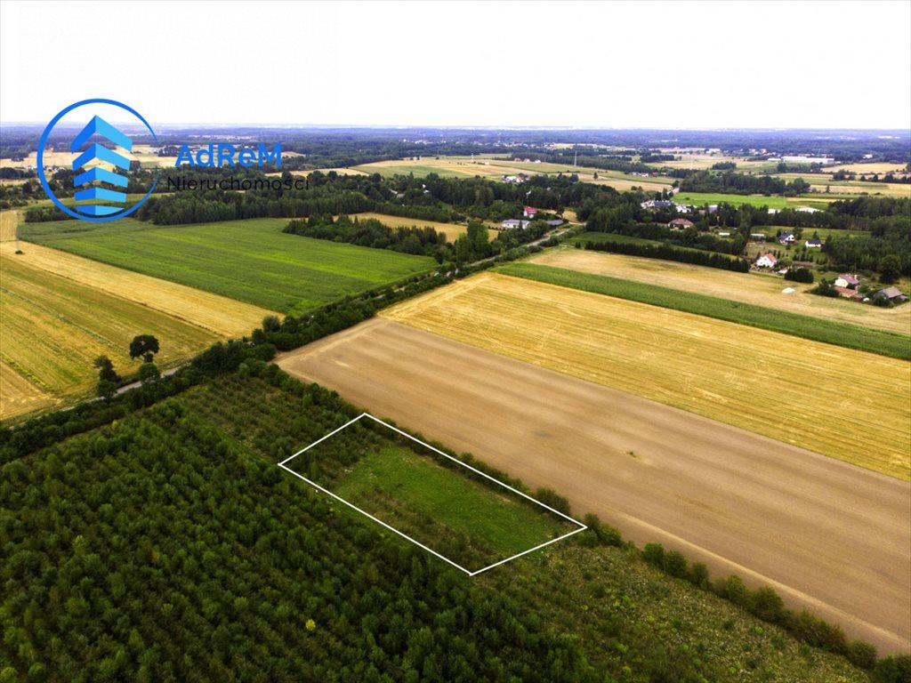 Działka rolna na sprzedaż Baciuty  3008m2 Foto 1