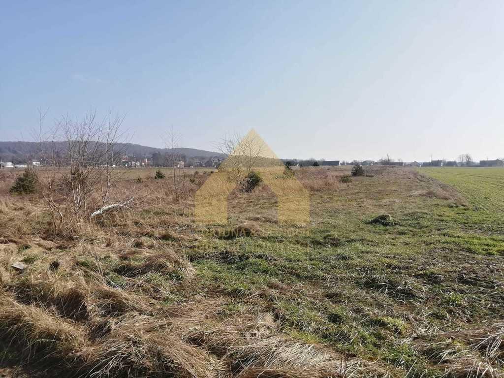 Działka rolna na sprzedaż Żyrowa  17020m2 Foto 4