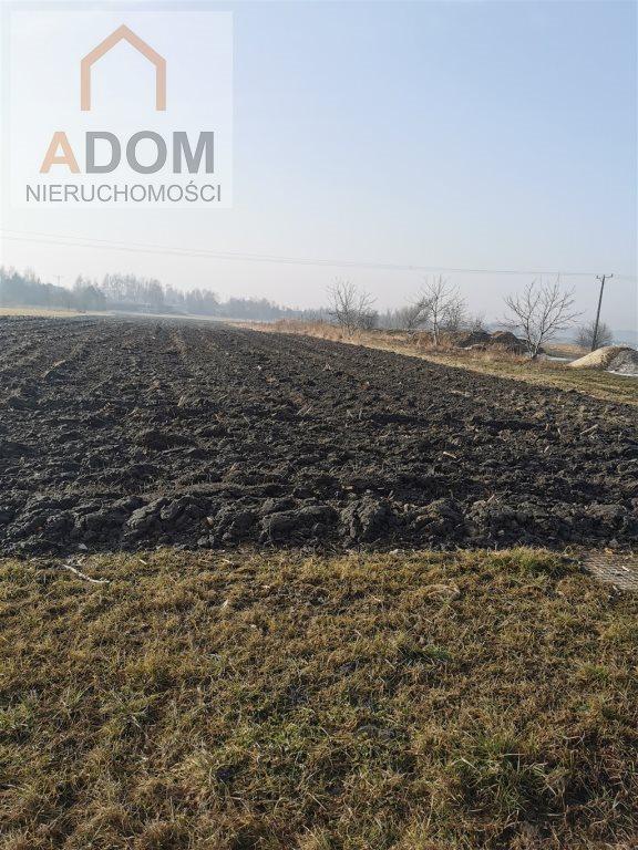 Działka rolna na sprzedaż Chełm Śląski  10519m2 Foto 1
