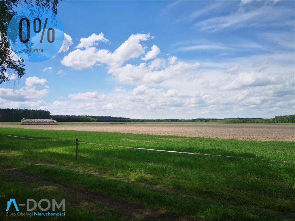Działka rolna na sprzedaż Podlesie  100000m2 Foto 1