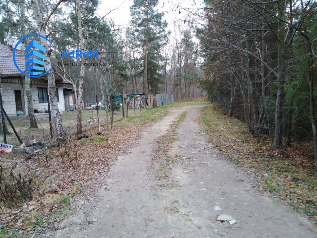 Działka leśna na sprzedaż Nowy Prażmów, Leśna  1521m2 Foto 4