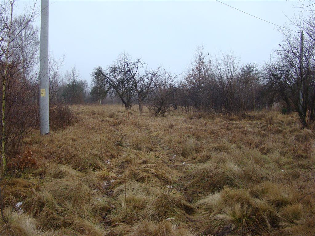 Działka siedliskowa na sprzedaż Tomaszew, okolice Żyrardowa, okolice Żyrardowa  16200m2 Foto 4