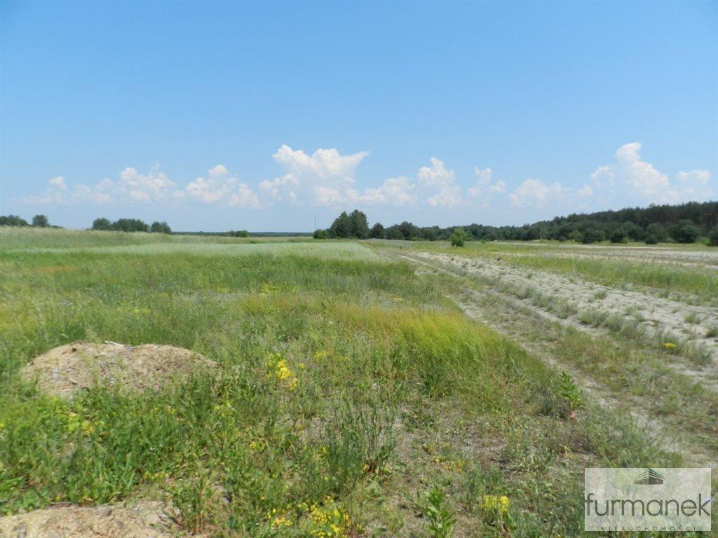 Działka rolna na sprzedaż Gózd Lipiński  11400m2 Foto 5
