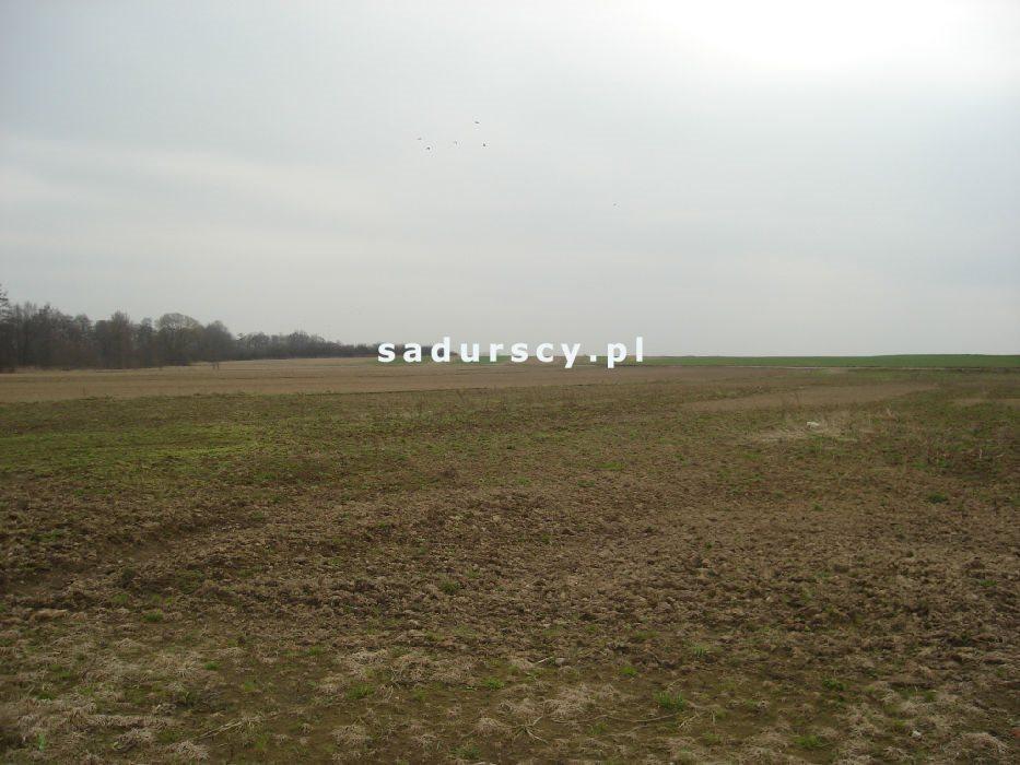 Działka inwestycyjna na sprzedaż Morawica  10000m2 Foto 4