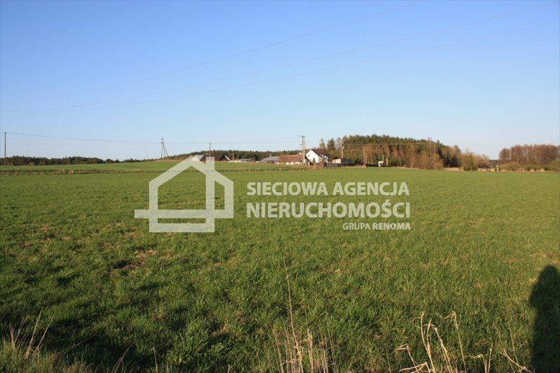 Działka siedliskowa na sprzedaż Stara Kiszewa  8767m2 Foto 10
