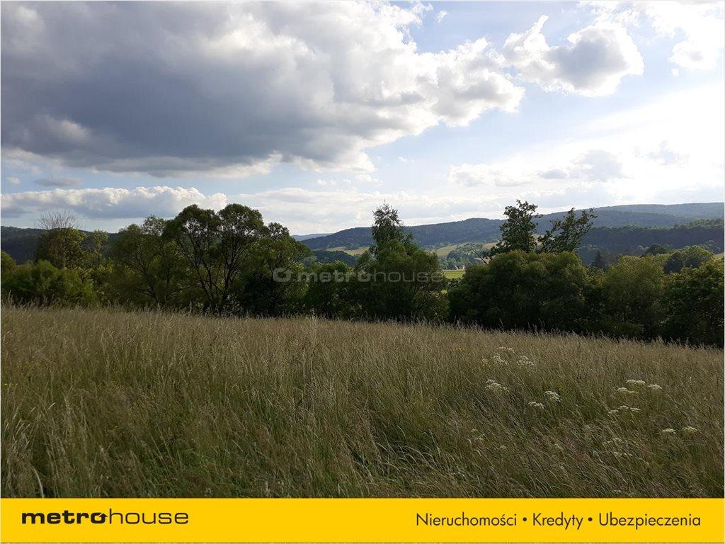 Działka rolna na sprzedaż Morochów, Zagórz  10000m2 Foto 7
