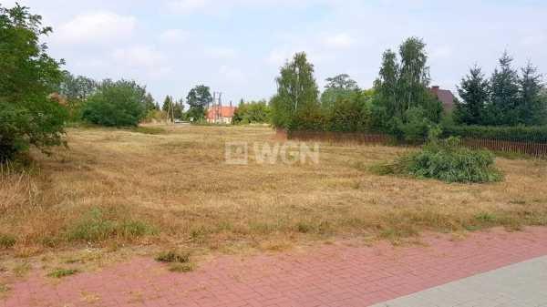 Działka budowlana na sprzedaż Wilczyn, Wilczyn  1186m2 Foto 1