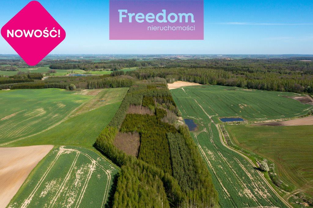 Działka leśna na sprzedaż Gronowo  70600m2 Foto 5