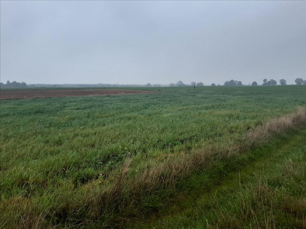 Działka rolna na sprzedaż Mielenko, Mielno  3020m2 Foto 8