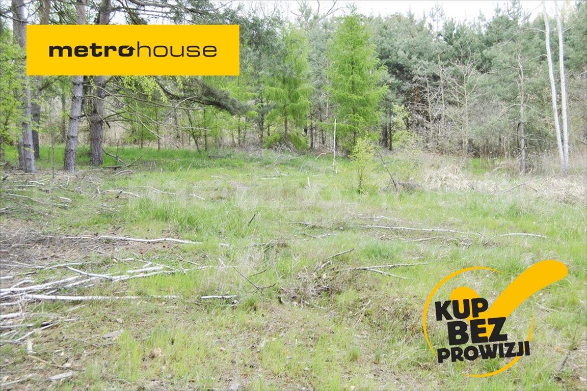 Działka rolna na sprzedaż Wały, Brzeg Dolny  5510m2 Foto 1