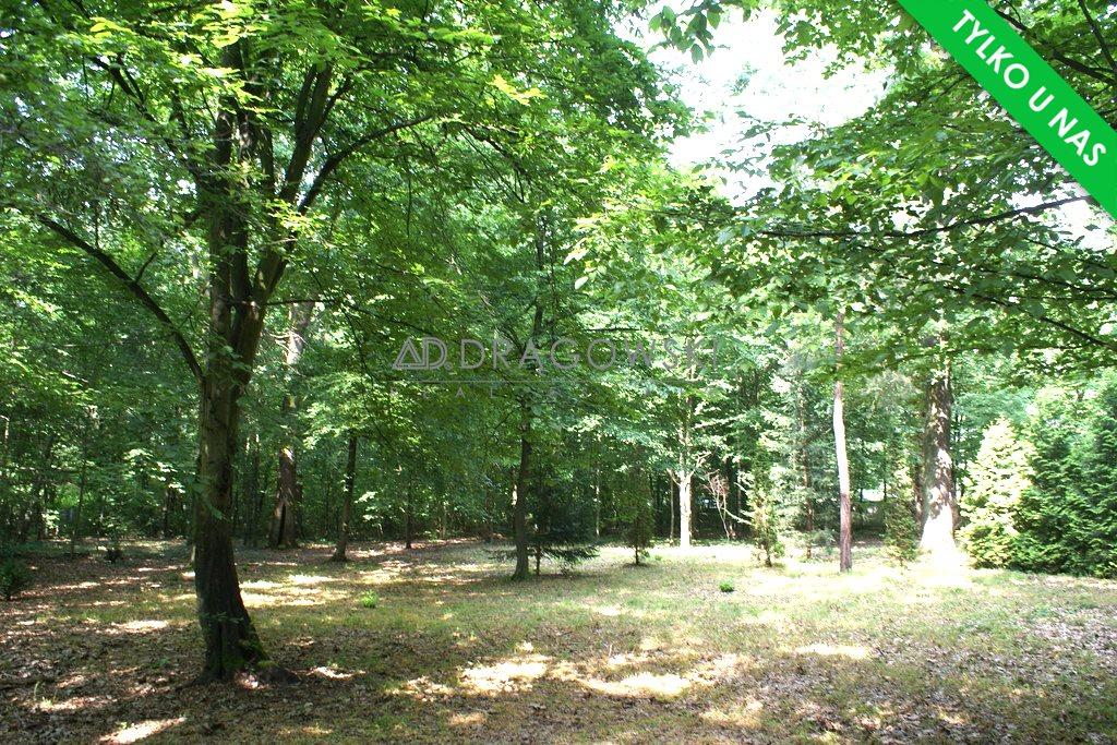 Działka budowlana na sprzedaż Podkowa Leśna  2343m2 Foto 1
