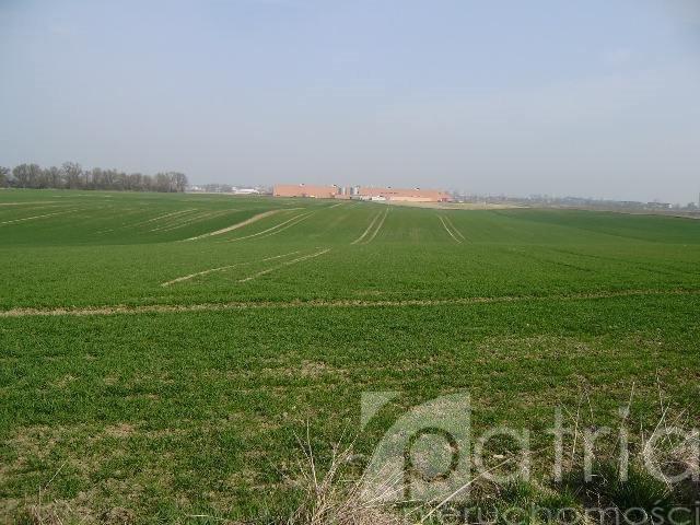 Działka rolna na sprzedaż Ustowo  20000m2 Foto 3