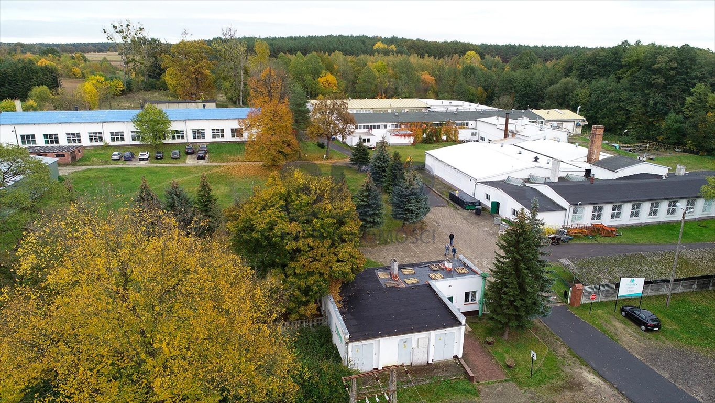 Lokal użytkowy na sprzedaż Wołów  21000m2 Foto 2