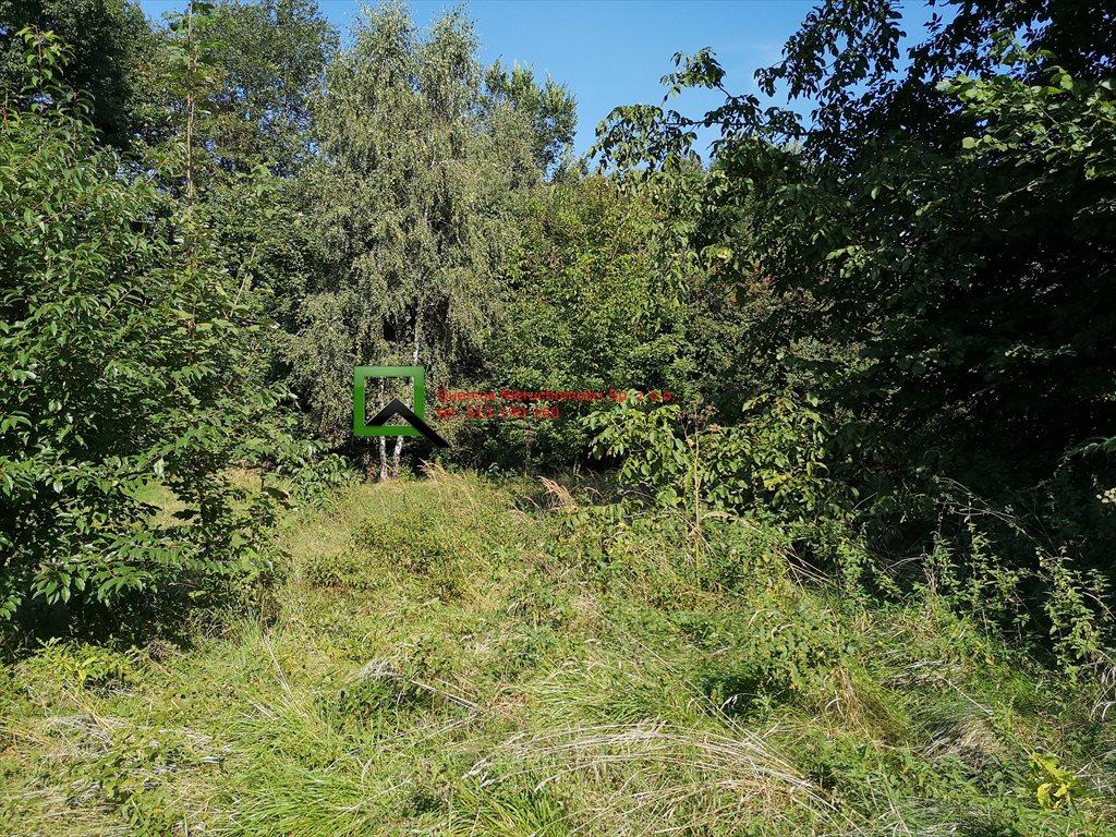 Działka budowlana na sprzedaż Sułków  800m2 Foto 4