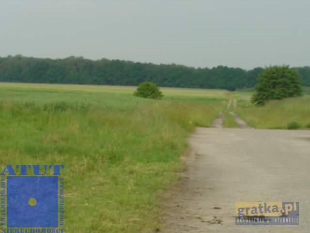 Działka rolna na sprzedaż Gliwice  15000m2 Foto 1