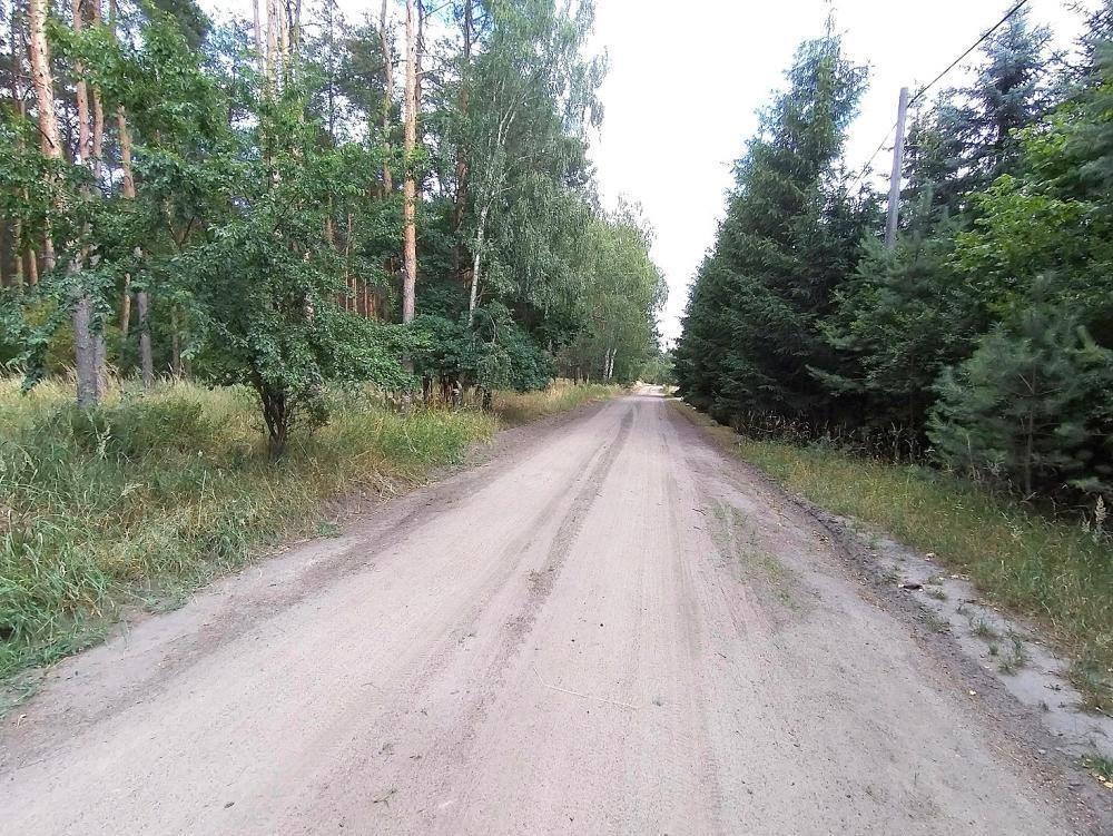 Działka inna na sprzedaż Dąbrówka Kościelna, Osiedle Leśne  2000m2 Foto 1