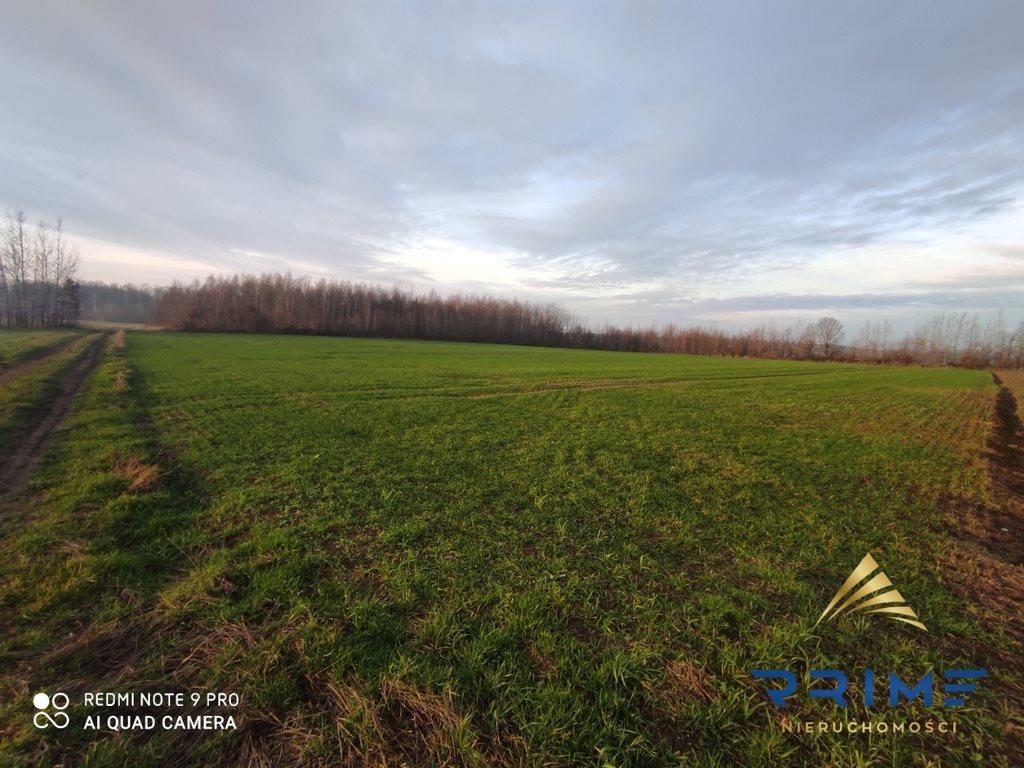 Działka leśna z prawem budowy na sprzedaż Wilkowice  14067m2 Foto 2