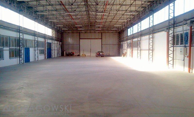 Lokal użytkowy na sprzedaż Nowy Dwór Mazowiecki  4500m2 Foto 4