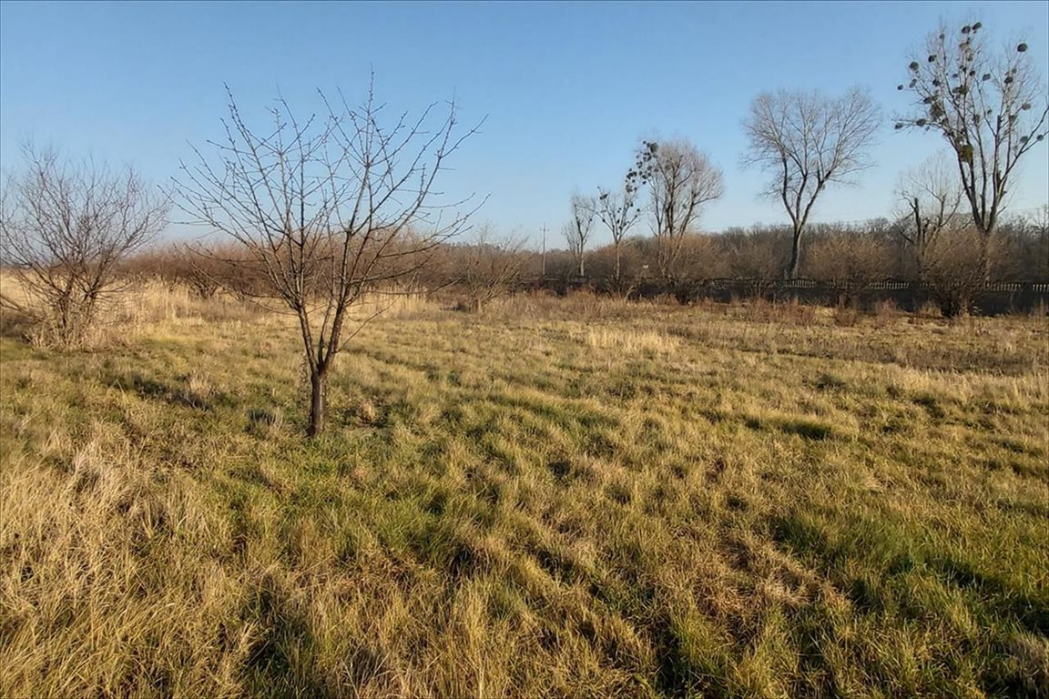 Działka rolna na sprzedaż Gałów, Miękinia  276m2 Foto 7