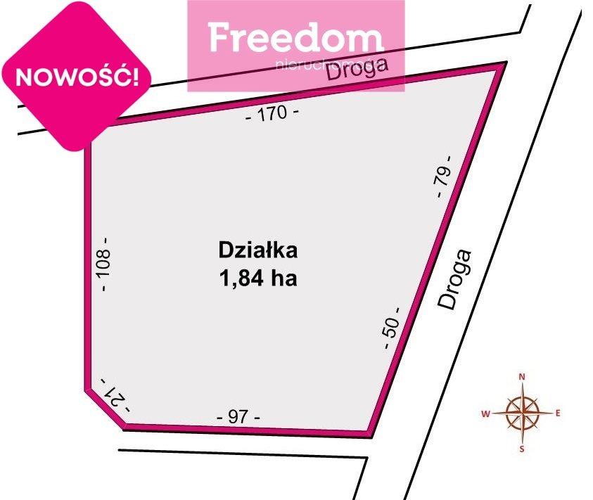 Działka inwestycyjna na sprzedaż Duńkowiczki  17670m2 Foto 5