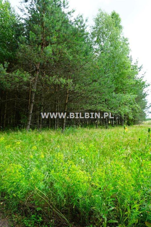 Działka budowlana na sprzedaż Suwałki, Gawrych-Ruda  10056m2 Foto 2