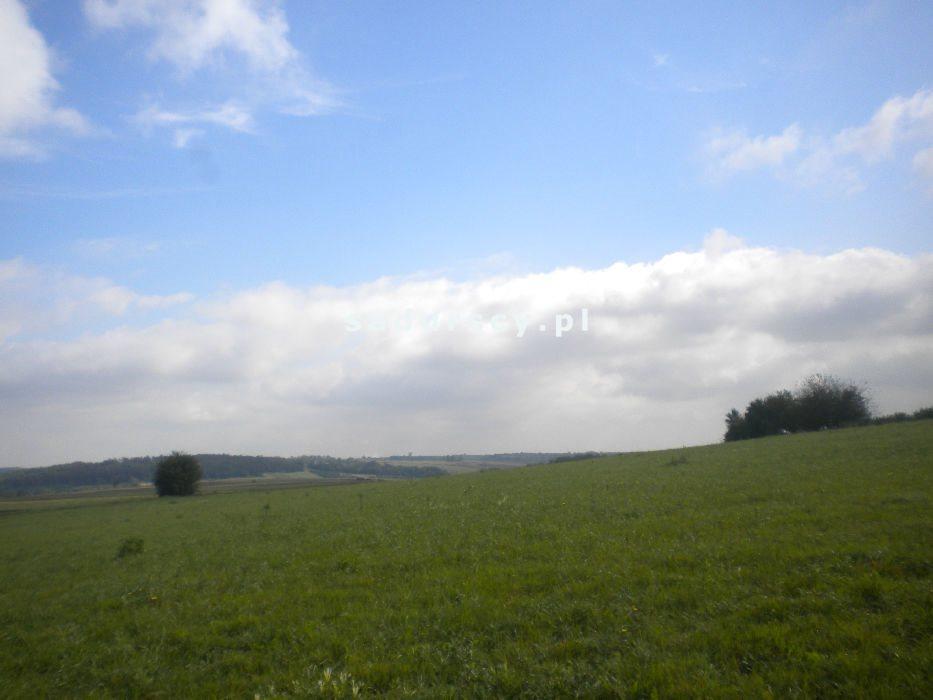 Działka rolna na sprzedaż Gołyszyn  28520m2 Foto 9