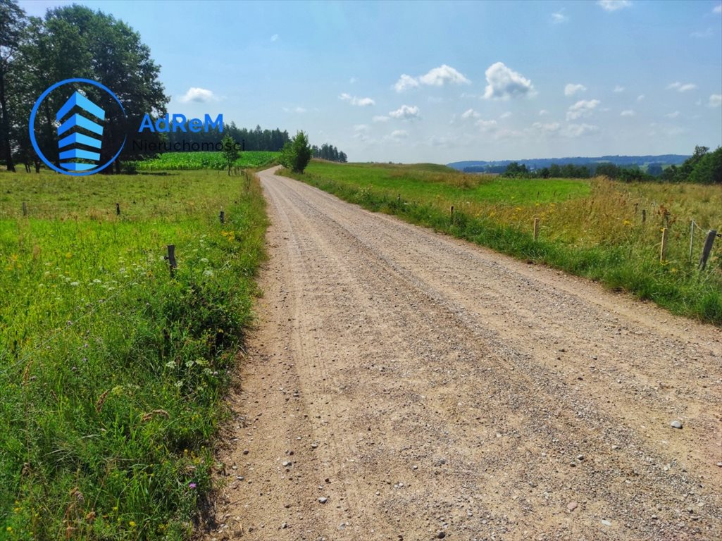Działka rolna na sprzedaż Przerośl  13500m2 Foto 7