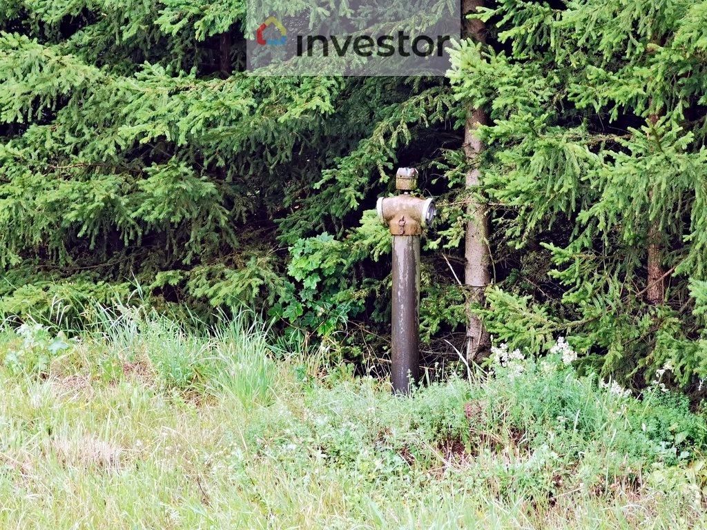 Działka inna pod dzierżawę Siemyśl  7436m2 Foto 6
